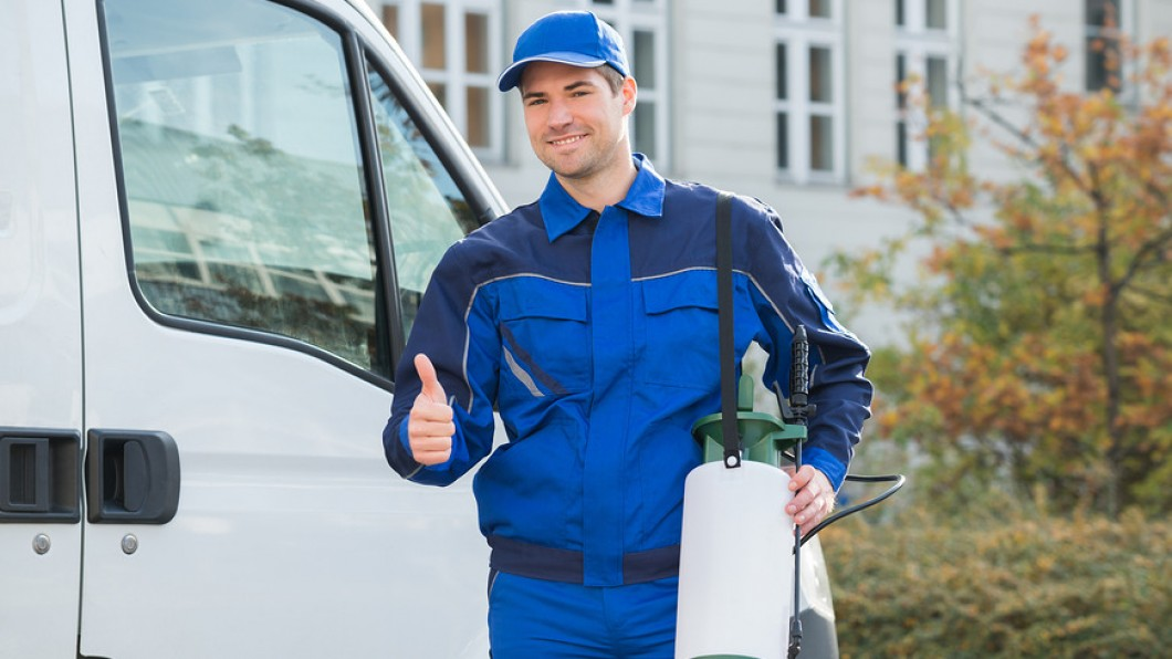 Clear Your Commercial Property of Pesky Pests